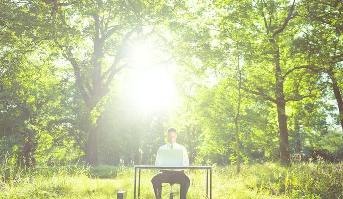 Green Computing: Tips on Minimising Environmental Impact in Everyday Use