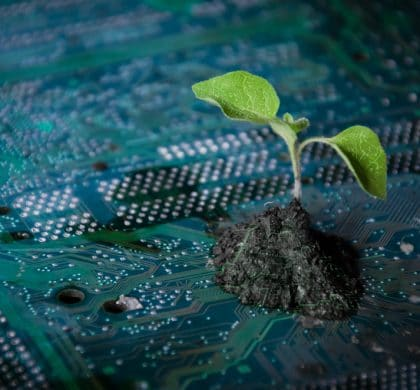 Artificial intelligence – the answer to protecting the environment?